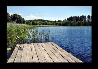 Gospodarstwo Agroturystyczne – Białorzeczka – Regina Malinowska